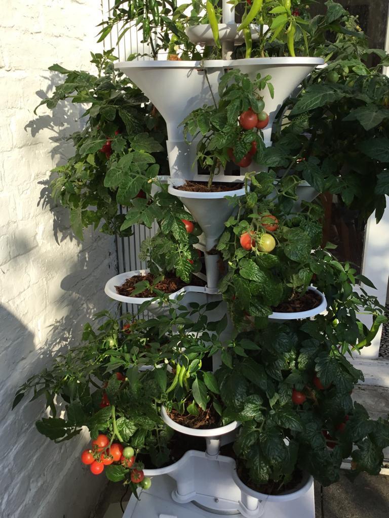 urban_gardening_marklaneTV